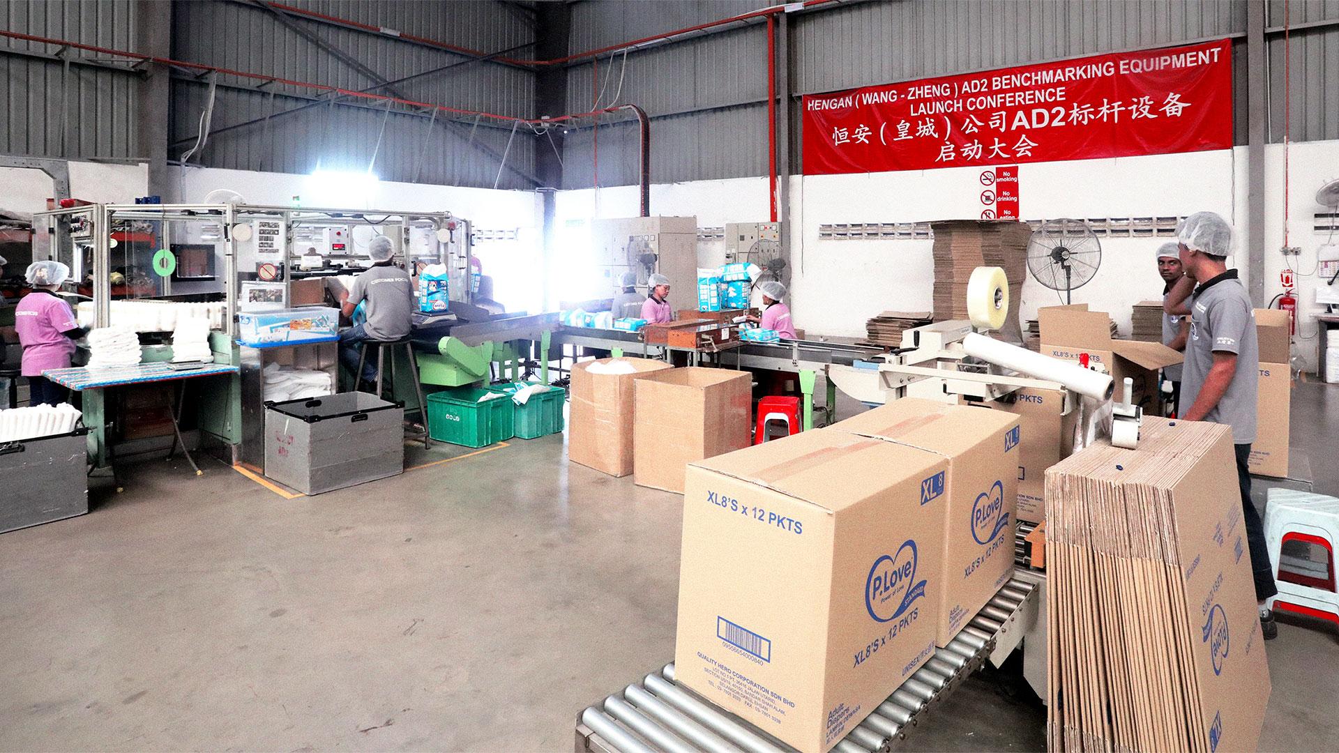 Our Subsidiary – Wang-Zheng